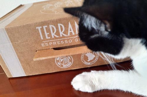 Faire son packaging par Terramoka